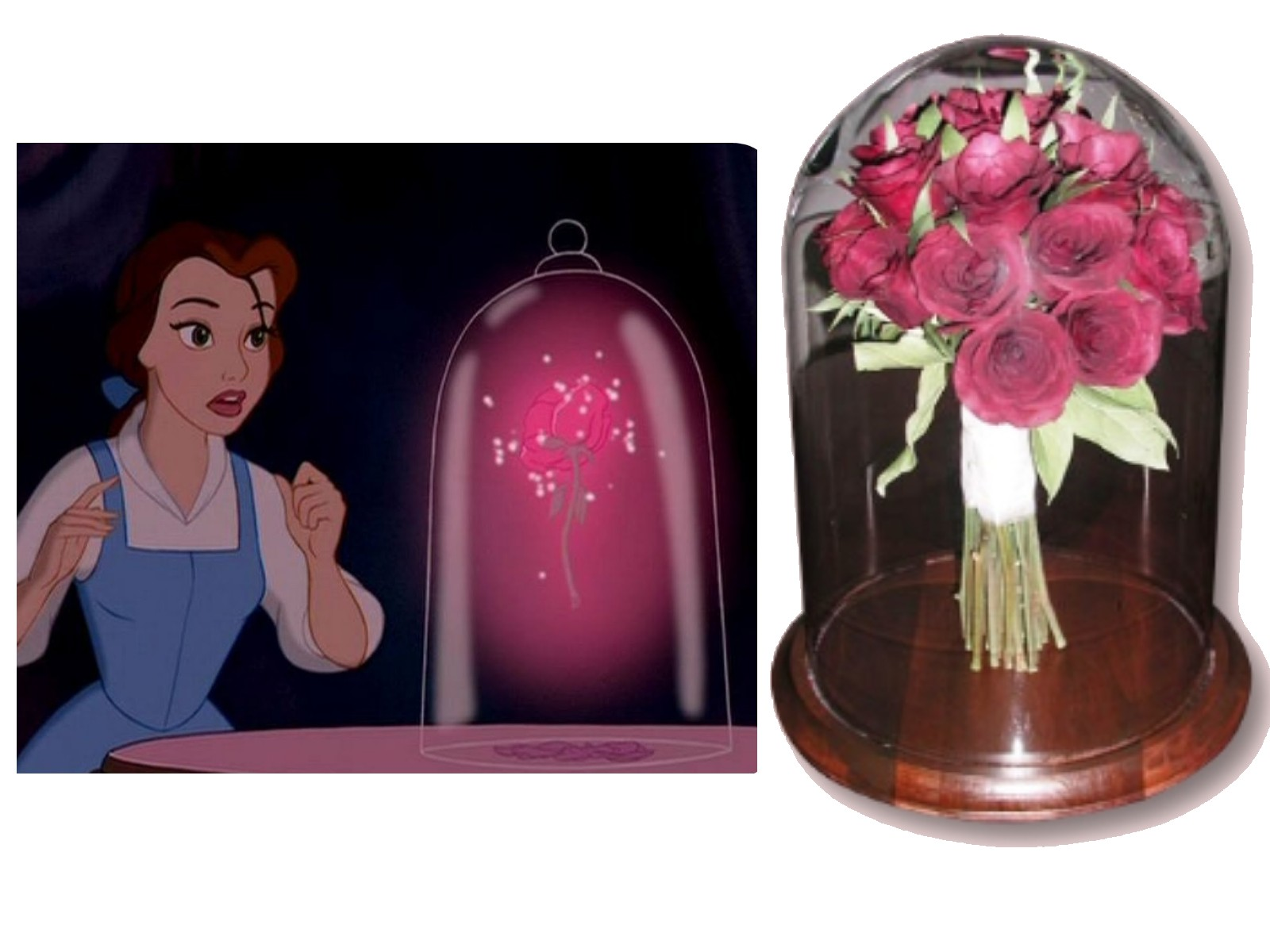 Encasement suspended in time page 2 how would you like to encase your wedding bouquet like the flower in beauty and the beast here at suspended in timer we can make your dreams come true izmirmasajfo