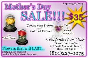 Mothers Day advertisment 4x6 copy