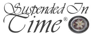 Suspended In Time Inc.